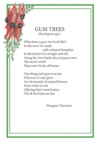 Elizabeth Alger Margaret Thornton Australian Flower Fairies Address Book Gum Tree Poem