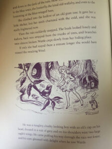 Pixie OHarris Fairy Book Contents Wattle Fairy line sm
