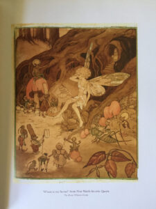 Pixie OHarris Fairy Book Contents Wattle Fairy sm