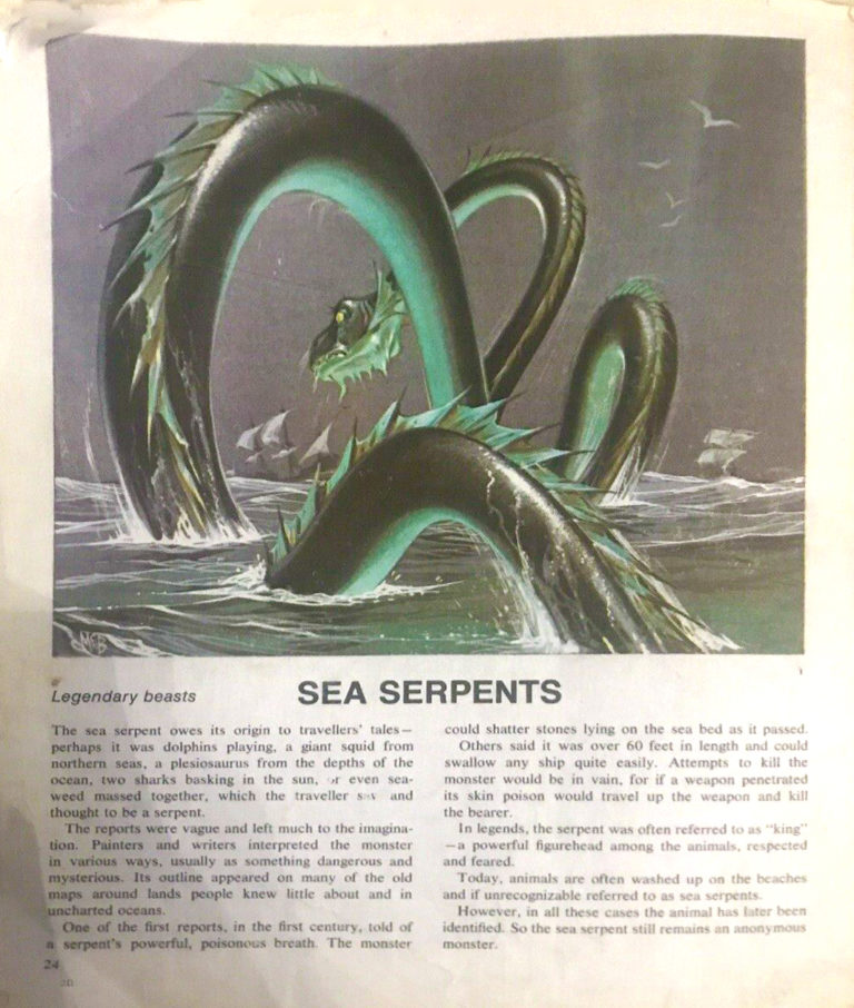 Finding Out 16 3 McBride Beasts Sea Serpents crop