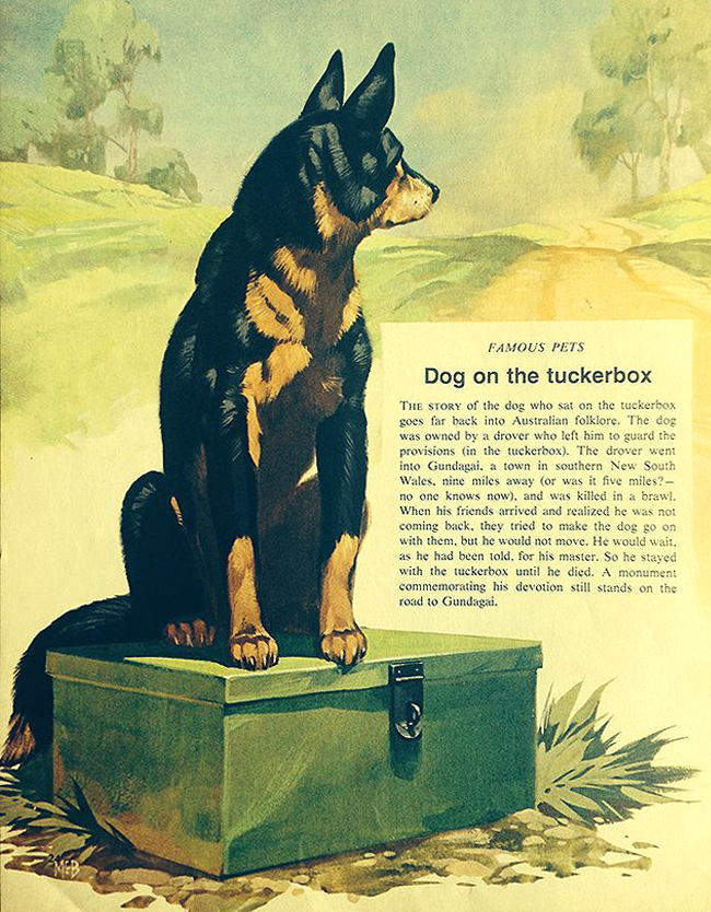 Finding Out McBride Pets Dog on the Tuckerbox