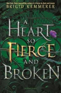 bridgid kemmerer heart so fierce and broken